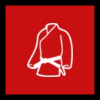begin martial arts classes